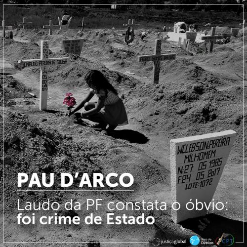 PauDArco_LaudoPF_7