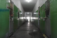 degase_ Mecanismo Estadual de Prevenção e Combate a Tortura do Rio de Janeiro